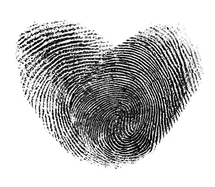 importance of finger printing However, as with all technical aspects of crime scene investigations, the application of fingerprint powder is a skill that requires professional training.