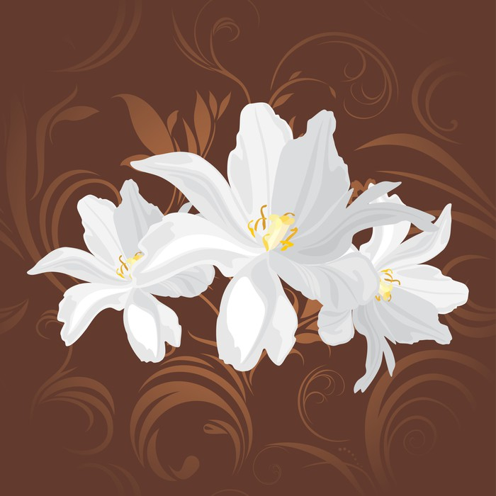 White flowers on the brown ornamental background wall mural pixers white flowers on the brown ornamental background vinyl wall mural backgrounds mightylinksfo