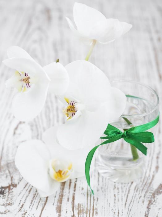 Vinylová Tapeta Kytice z orchidejí - Národní svátky
