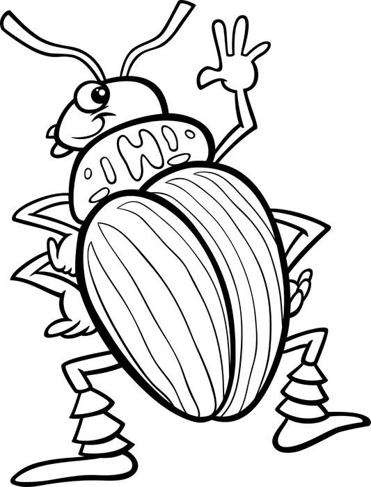Fotomural Escarabajo de la papa para colorear de insectos • Pixers ...