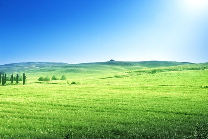 Vinylová Tapeta Kopce v slunečný den Toskánsku, Itálie - Roční období