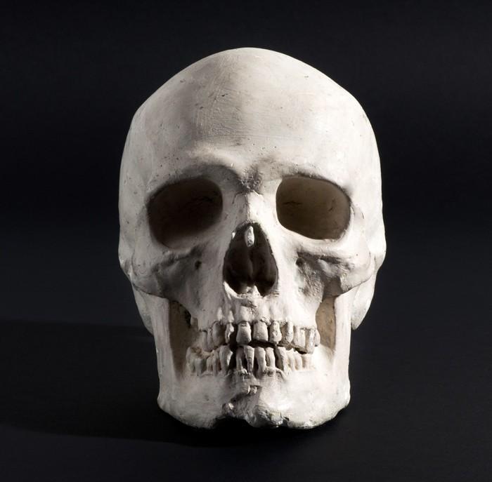 Vinilo Pixerstick Cráneo humano en un fondo negro • Pixers ...