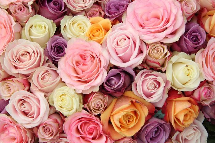 Vinylová Tapeta Pastel svatební růže - Slavnosti