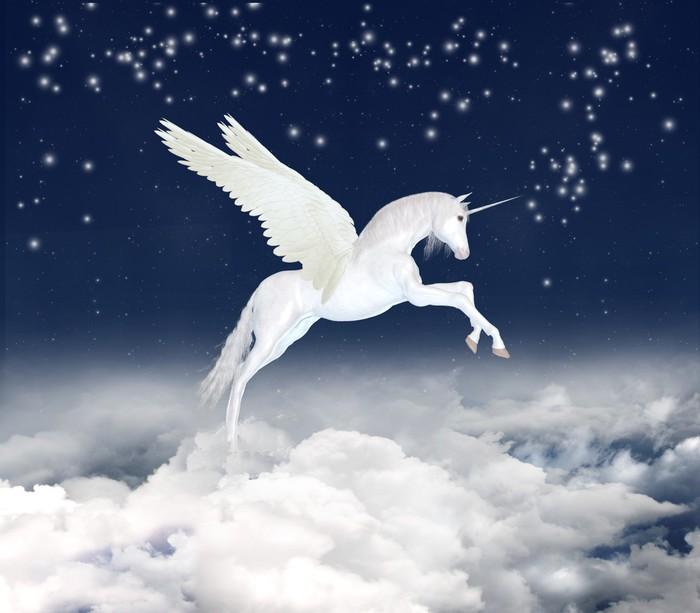 Vinylová Tapeta Unicorn na obloze - Témata