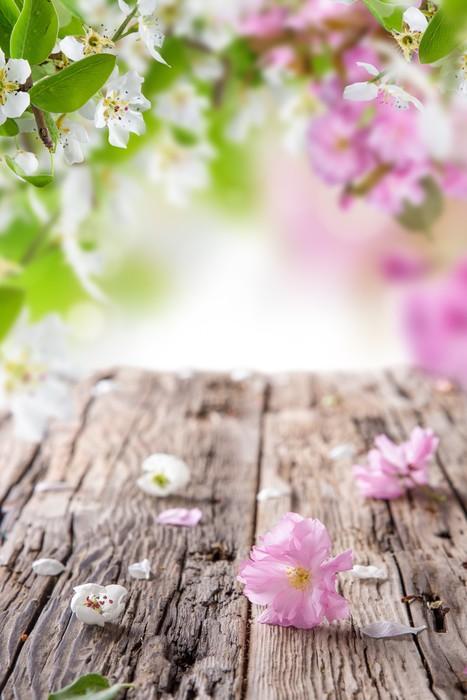 Vinylová Tapeta Jarní květy na pozadí - Květiny