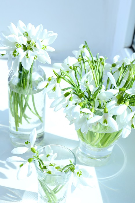 Beautiful bouquets of snowdrops in vases on windowsill Vinyl Wallpaper - Flowers