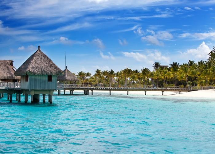 Vinylová Tapeta Boudy v moři a palma - Prázdniny