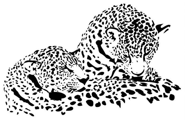fototapeta wielkie koty jaguar  gepard  lampart