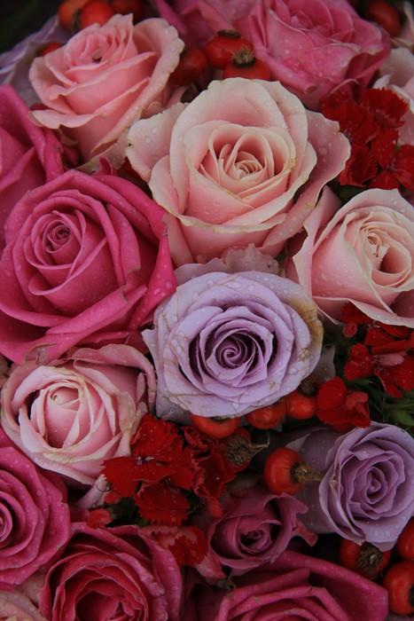 Vinylová Tapeta Svatební růže v růžové a fialové - Slavnosti