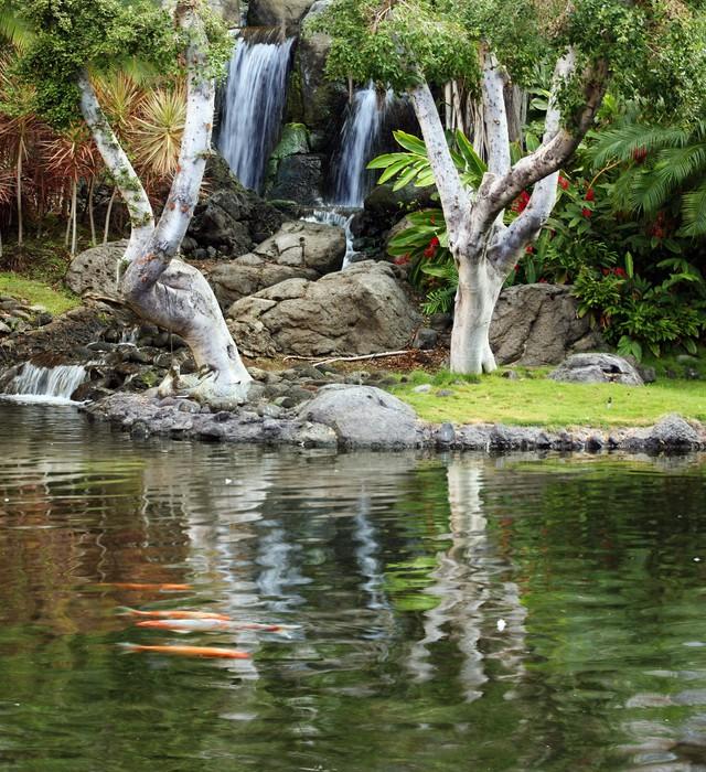 Vinilo pixerstick estanque cascada y koi en jard n japon s for Estanque cascada