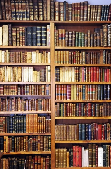 Old books, library Wall Mural • Pixers® • We live to change
