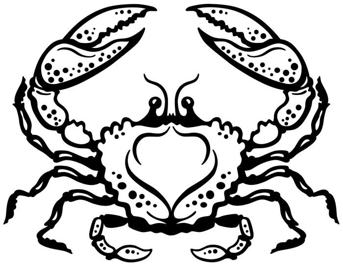 Vinylová Tapeta Krab černá bílá - Imaginární zvířata