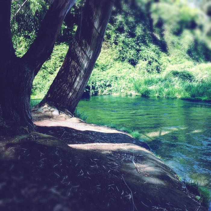 Vinylová Tapeta Pramenitá voda. - Voda