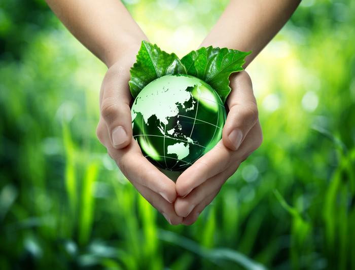 Vinylová Tapeta Ekologický koncept - chránit svět je zelená - Orient - Ekologie