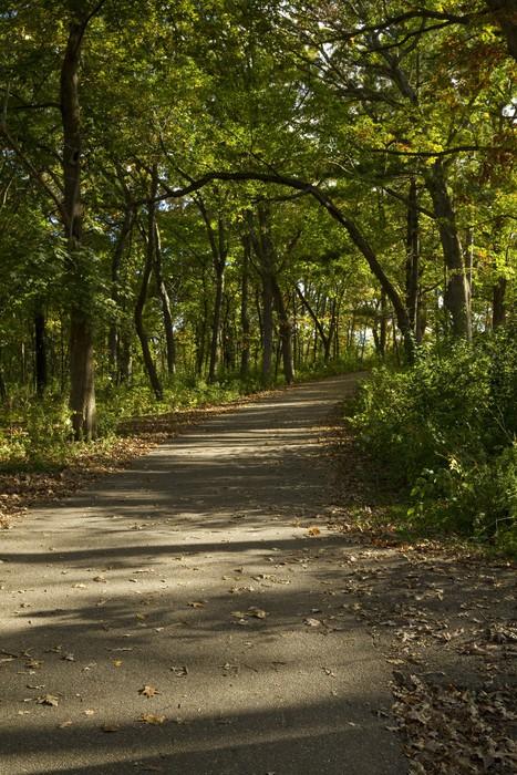 Vinylová Tapeta Fall Trail Scenic - Jiné