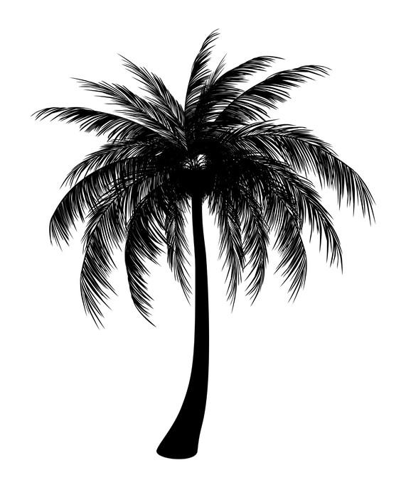 Aufkleber silhouette von palmen pixers wir leben um - Palmier dessin ...