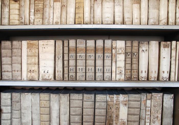 Carta da parati scaffali di una biblioteca con libri for Carta parati libri