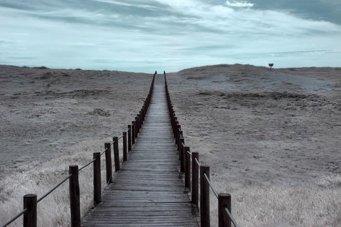 Vinylová Tapeta Široký duna - Jiné