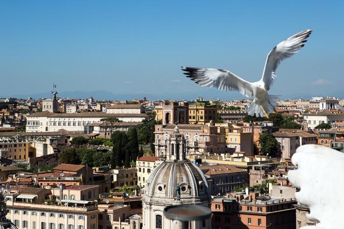 Vinylová Tapeta Panoramatický výhled na Řím - Evropská města