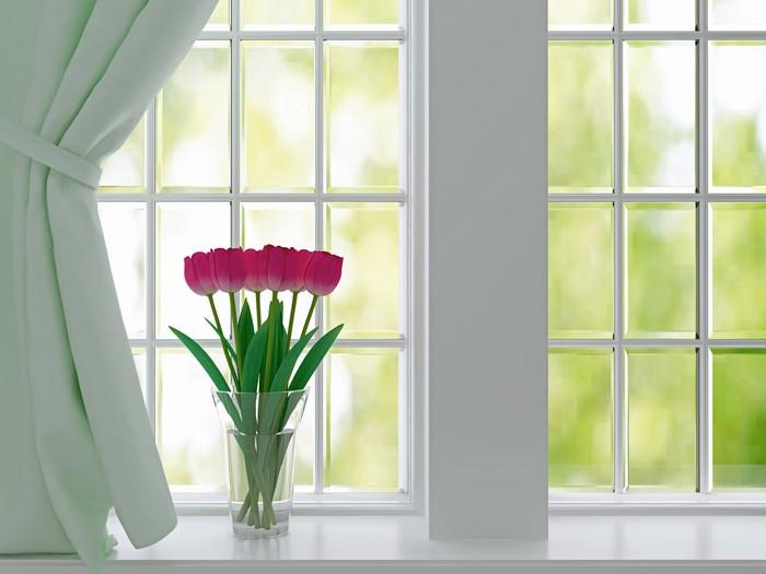 Vinylová fototapeta Tulipány na okenním parapetu. - Vinylová fototapeta