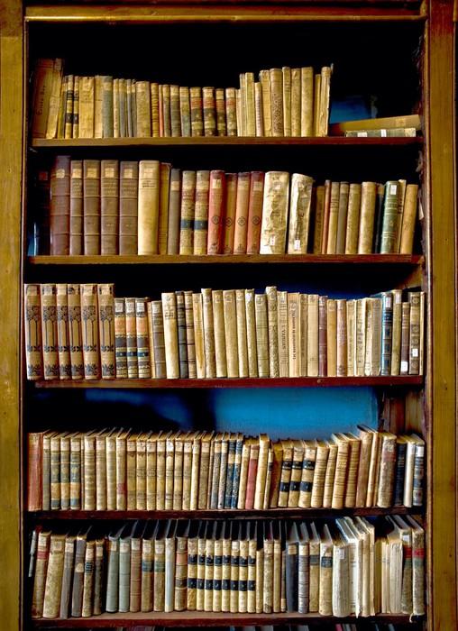 papier peint livres de la biblioth que pixers nous vivons pour changer. Black Bedroom Furniture Sets. Home Design Ideas
