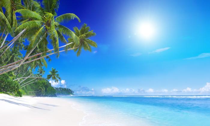 fototapete tropisches paradies pixers wir leben um. Black Bedroom Furniture Sets. Home Design Ideas
