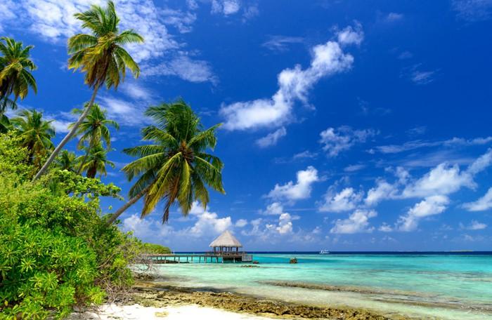 Vinylová Tapeta Osamělé pláži na Maledivách - Prázdniny