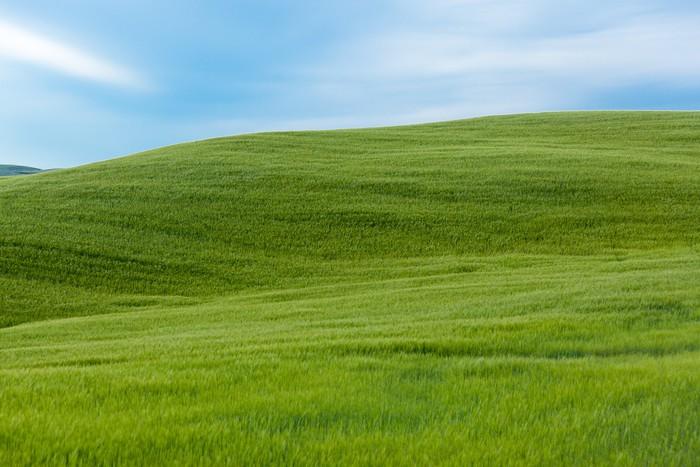 Vinylová Tapeta Typická Toskánsko krajina, Itálie - Prázdniny