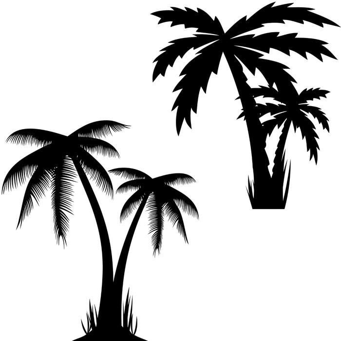 Vinylová Tapeta Vektorové ilustrace palem. - Stromy a listí