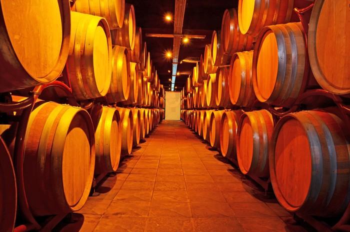 Wine wooden barrels cellar wall mural pixers we for Wine cellar wall mural