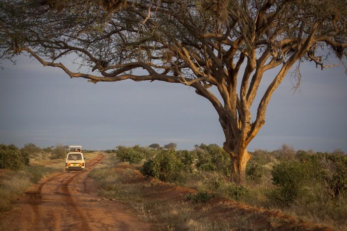 Vinylová Tapeta Safari vozidlo v africké divočině - Témata