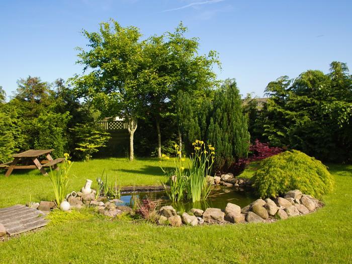 Fototapete Schöne klassische Garten Fisch-Teich im Garten ...
