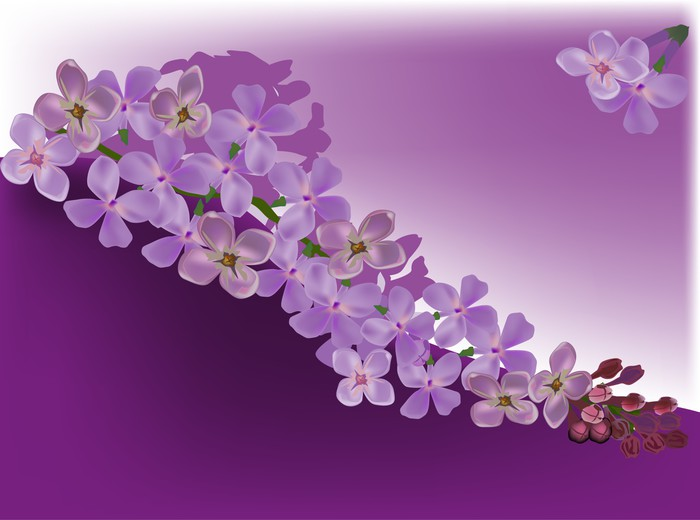 Aufkleber Lila Blume Dekoration   Pixerstick