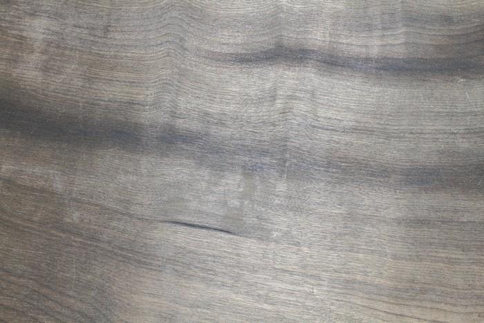 Ebenholz leben