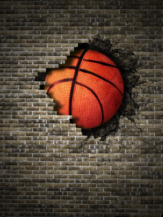 Basketball wall mural pixers we live to change for Basketball mural wallpaper