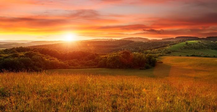Vinylová Tapeta Krásný západ slunce na poli - v odstínech oranžové - Témata