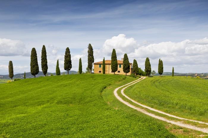 Poster maison rurale avec cypr s autour toscane italie for Acheter une maison en toscane italie