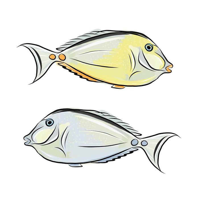 Papier peint croquis de poisson pour votre design pixers - Croquis poisson ...