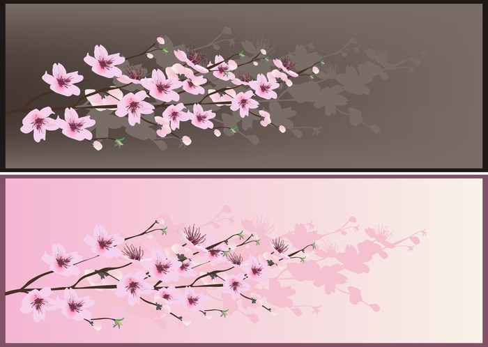 Pink And Brown Illustration With Cherry Tree Flowers Wall Mural