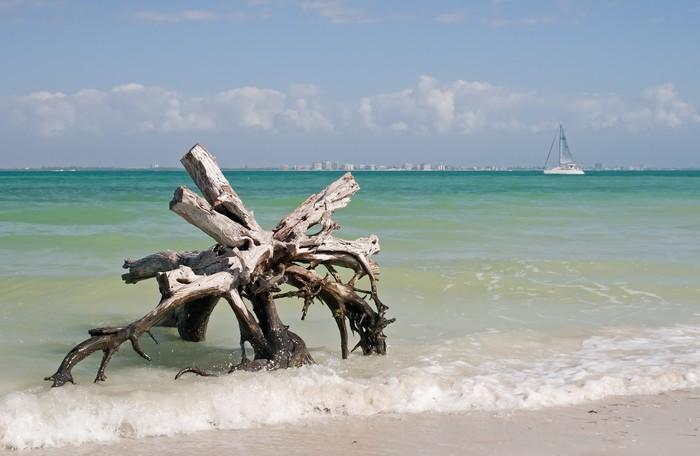Vinylová Tapeta Letní dovolená Beach - Prázdniny