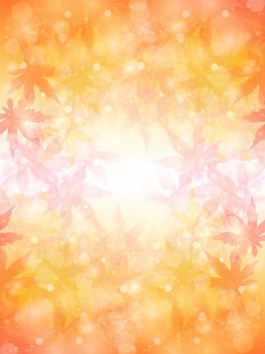 Vinylová Tapeta Maple podzimní listí pozadí - Surové materiály