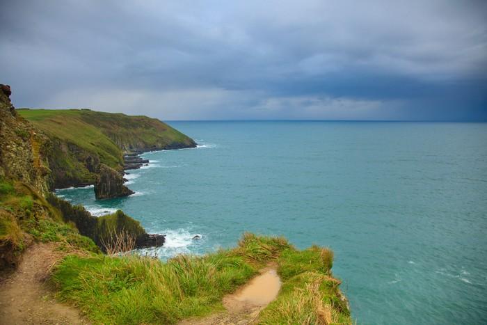 Vinylová Tapeta Irská krajina. pobřeží Atlantského pobřeží County Cork, Ireland - Květiny