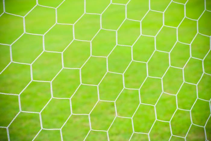 Vinylová Tapeta Fotbal fotbal branková síť - Outdoorové sporty