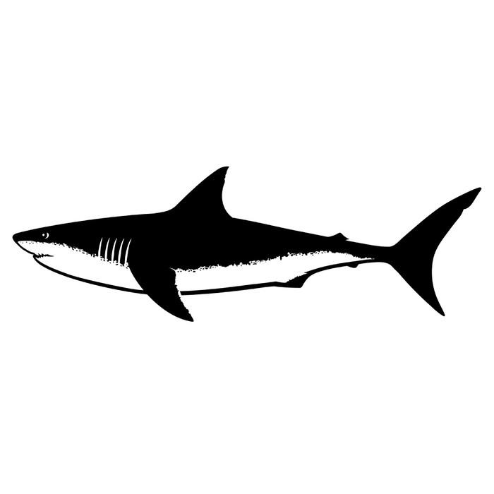 Vinilo Pixerstick Gran tiburón blanco de la silueta aislado en ...