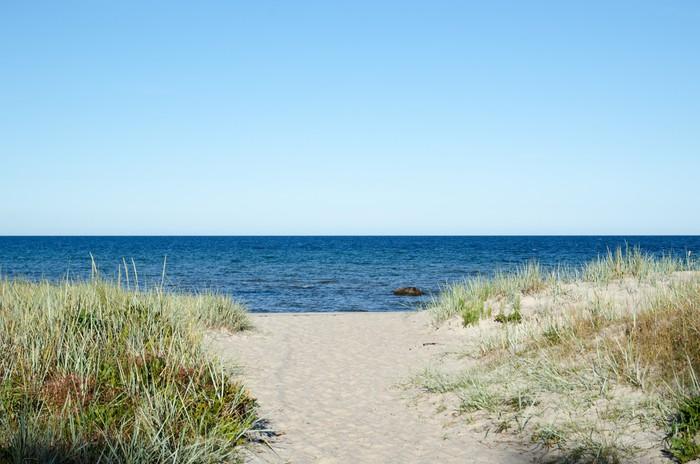 fototapete weg zum strand von ostsee auf der schwedischen insel land pixers wir leben um. Black Bedroom Furniture Sets. Home Design Ideas