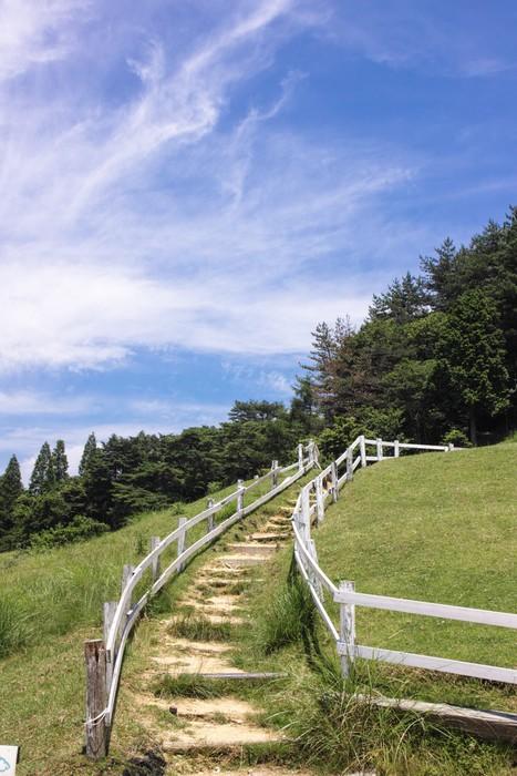 Vinylová Tapeta 丘 の 階段 1 - Hory