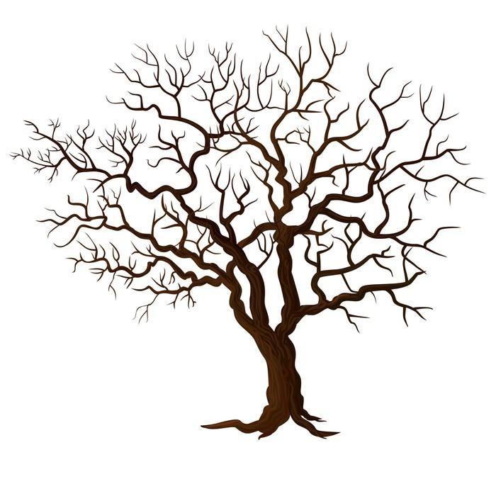 Vinylová Tapeta Strom bez listí izolovaných na bílém - Roční období