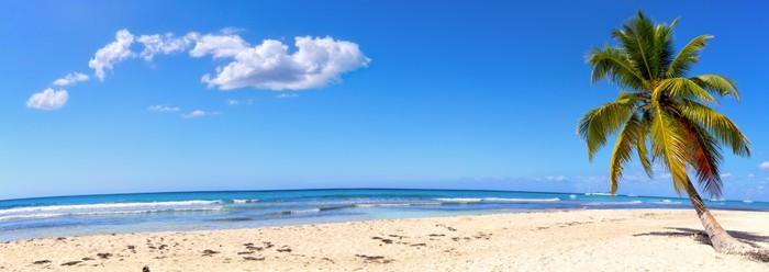 Nálepka Pixerstick Panoramatický pohled na bílé písčité pláže s palmami - Palmy