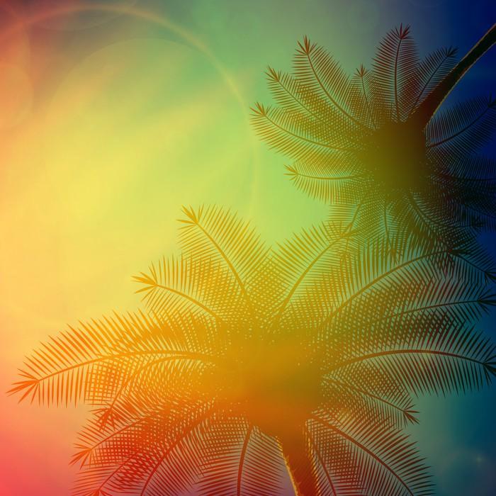 papier peint palmiers avec beau coucher de soleil. Black Bedroom Furniture Sets. Home Design Ideas
