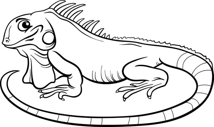 Vinilo Pixerstick Iguana libro para colorear de dibujos animados ...